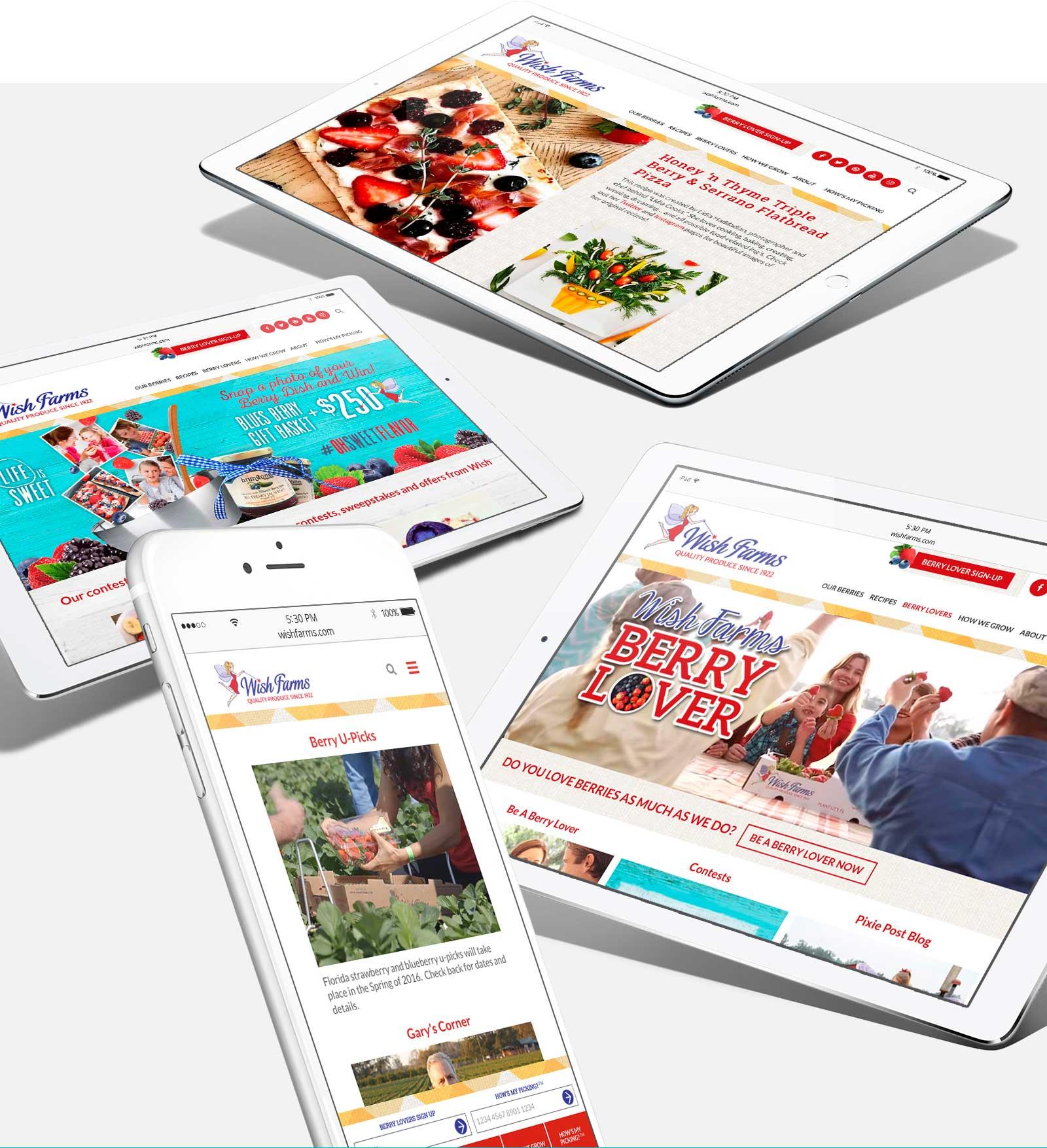 wish-farms-web-design-compressed
